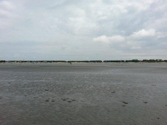 West Wittering Beach: Beach