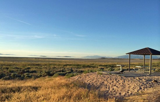Antelope Island State Park : Welcome to Bridger Bay, site BB-06!