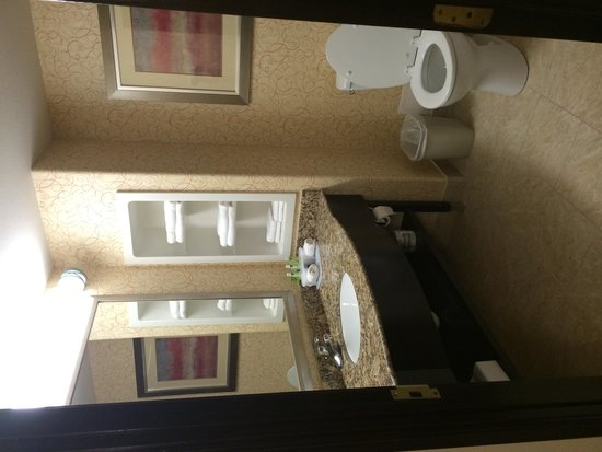 Holiday Inn Express Hotel & Suites Brownsville: Bathroom