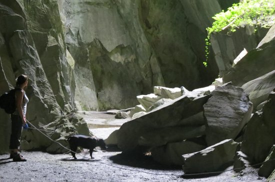 Greenhowe Luxury Lodges & Caravans: Me and my dog Taz in Cathedral Quarry