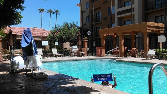 Courtyard by Marriott Phoenix Camelback: Best time to hit the pool? At noon! We enjoyed it all to ourselves!
