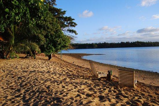 Mafana Island Beach Backpackers : 7am, tide out. Perfect