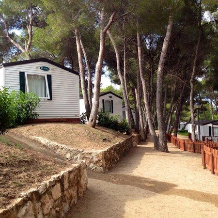 Las Palmeras Camping: Cisza i spokój -;)
