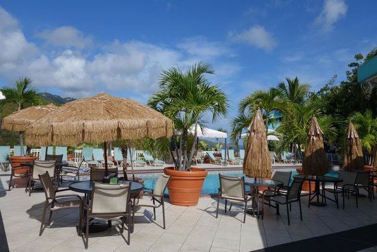 Flamboyan on the Bay Resort & Villas: View from the pool