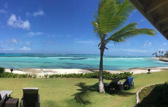 Club Med Punta Cana : Desde mi ventana