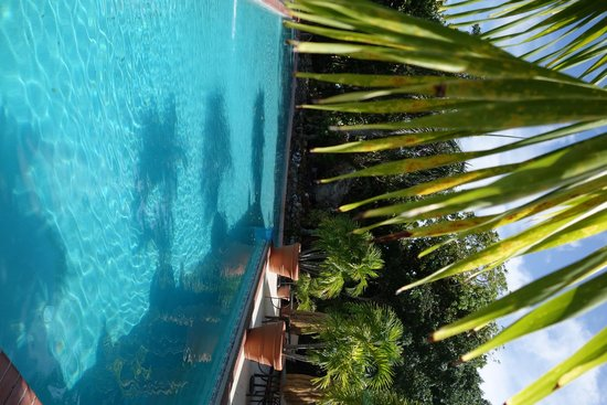 Magens Point Resort : Pool (sidways)