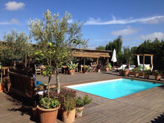 Can Aisha : La piscina, sullo sfondo la zona colazione