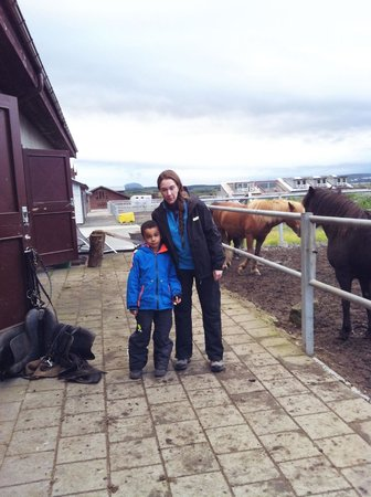 Viking Horses - Day Tours: Getting ready for the horse riding tour