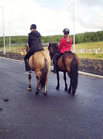 Viking Horses - Day Tours: Riding off...