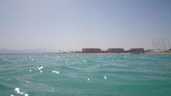 Sheraton Soma Bay Resort: Lovely water