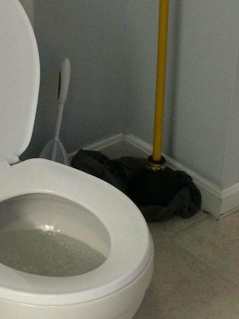 The Grand Beach Inn : salle de bain : à côté de la toilette un gros débouche toilette sur un sac à poubelle