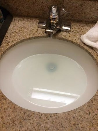 Quality Inn: Clogged sink, never drained for our overnight stay