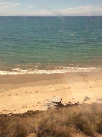 Amtrak Coast Starlight: The Starlight is right on the beach between Santa Barbara and San Luis Obispo
