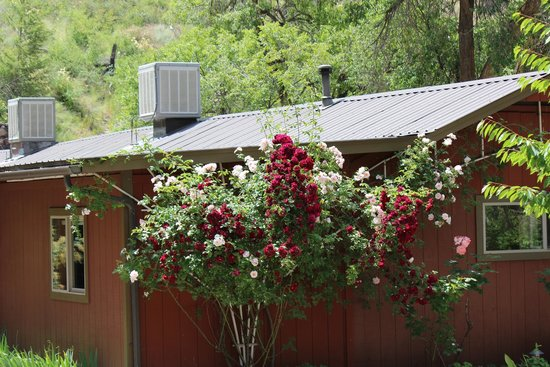Mackay Bar Outfitters & Guest Ranch: Beautiful flowers are everywhere on the grounds