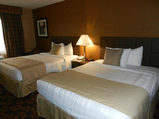 Quality Inn & Suites Denver Stapleton: Camera