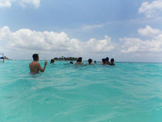 Sol Caribe Campo: el acuario