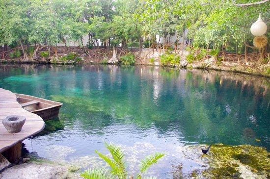Sandos Caracol Eco Resort : cenote_