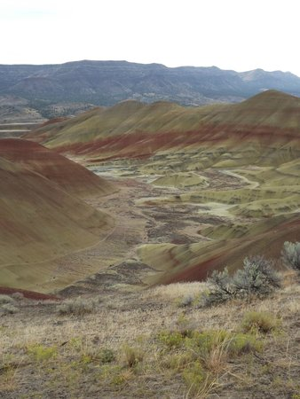 John Day Fossil Beds National Monument: After the rain