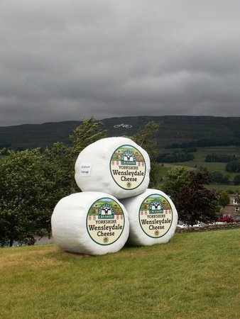 Wensleydale Creamery : Les grands fromages, with Le Tour cycle on Stags Fell beyond