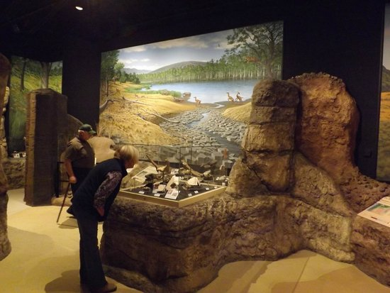 John Day Fossil Beds National Monument: Diorama in Visitors Center