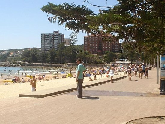 Manly Beach : The front Manly