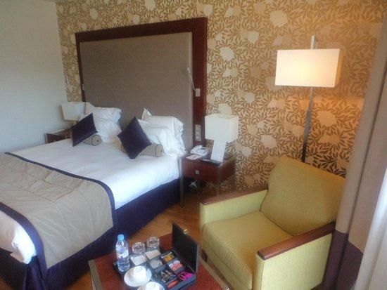 Relais Spa Paris-Roissy CDG: room2