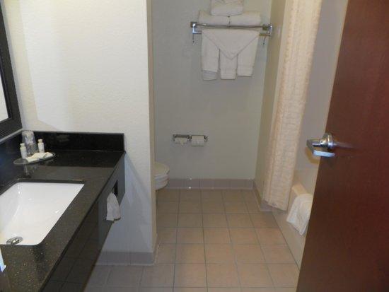 BEST WESTERN Concord Inn & Suites: salle de bain