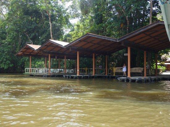 Evergreen Lodge: Welcome
