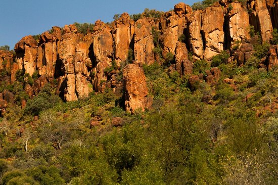 Waterberg Wilderness Lodge : The plateau above the lodge