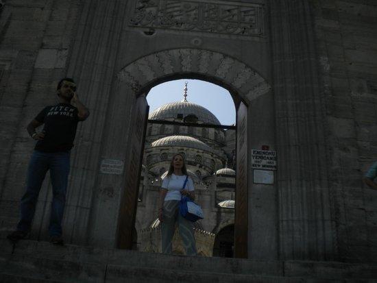 Estambul Excursion : entrada a una mezquita, en la ciudad de estambul