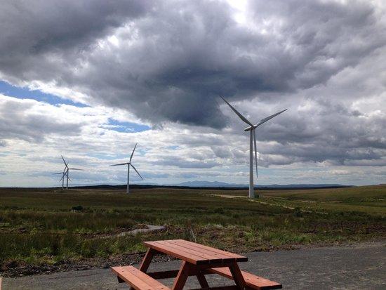 Whitelee Windfarm: Take a picnic!