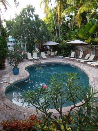 Marquesa Hotel: Pool.