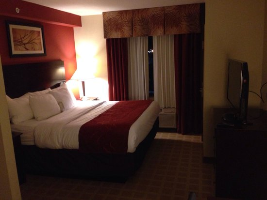 Comfort Suites Vero Beach: Camera king bed