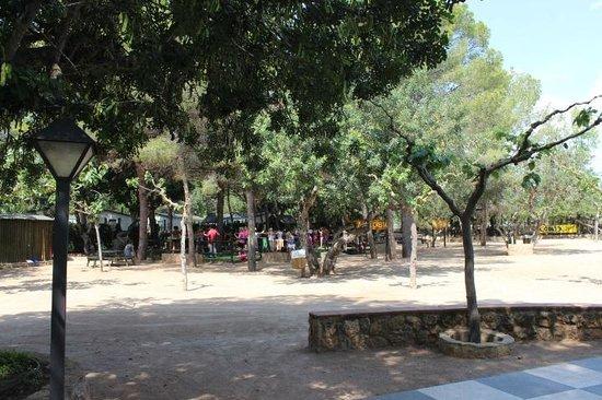 Camping La Torre del Sol : terrain de pétanque