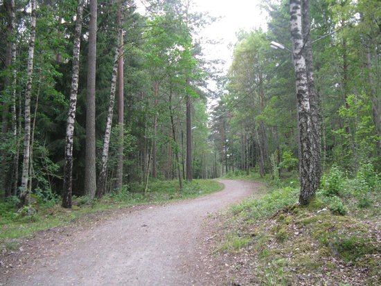 Best Western Arlanda Hotellby: Nature Trail