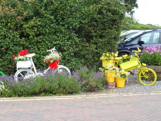 Perrywood Coffee Shop: Perrywood Garden Centre's Le Tour cycle display