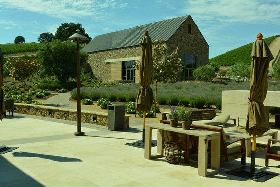 Niner Wine Estates: Looking out from tasting room patio