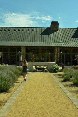 Niner Wine Estates: The tasting room patio