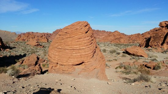 Valley of Fire State Park: bee hiv