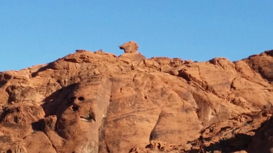 Valley of Fire State Park: Park 2