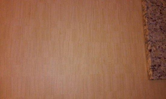 Spirit Mountain Casino Lodge : crap on walls in bathroom