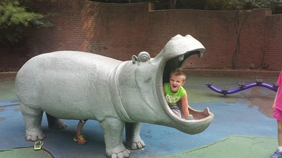 St. Louis Zoo: Photo op