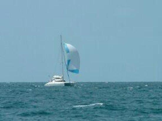 Paradise Found Sailing: Kit, Spinnacker flying, Grand Bahama Banks