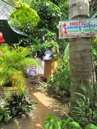 Judy House Cottages and Rooms: pathway to the backpacker rooms