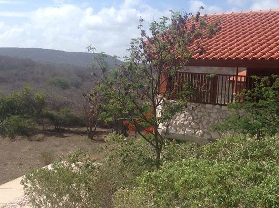 The Natural Curacao: bungalow view
