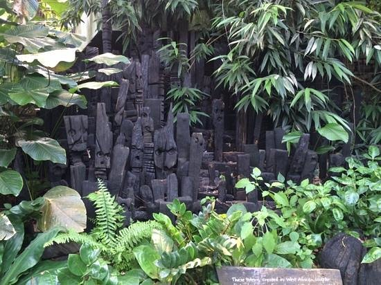 Eden Project: Wonderful wood carvings in the rainforest biome