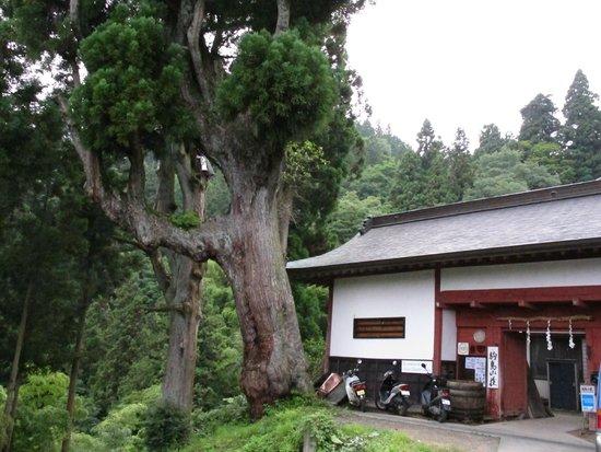 Shukubo KomadoriSanso: entrée de l'hôtel