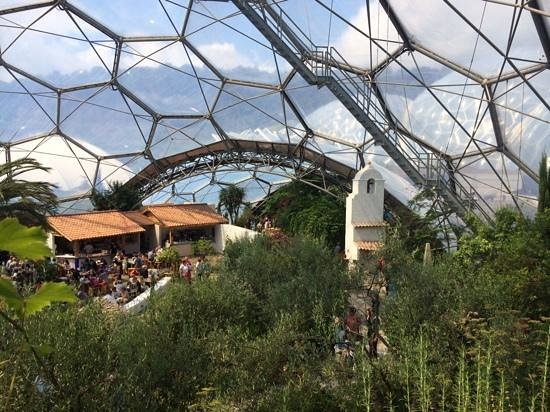 Eden Project: Apart the metal framework, you feel like you're actually in the Med!