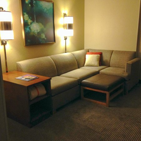 Hyatt Place Atlanta Airport North : sleeper sofa