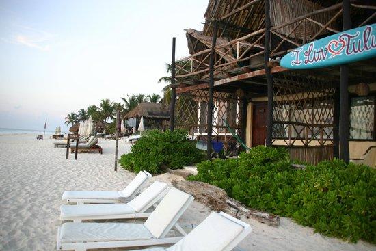 Luv Tulum : ocean front room